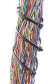 Bundles of colorful network cables — Stock Photo