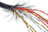 Colored cable — Foto de Stock
