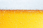 Beer an Foam. — Stock Photo