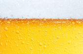 Cerveja uma espuma. — Foto Stock
