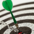 One darts on a dartboard — Stock Photo