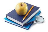 笔记本和苹果在白色背景上孤立 — 图库照片