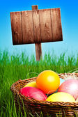 Painted Colorful Easter Eggs in Grass — Stock Photo