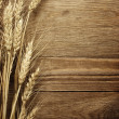Wheat — Stock Photo #31769827