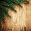 Christmas tree frame — Stock Photo