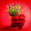 Foto Stock: Flower in pot decorated by heart