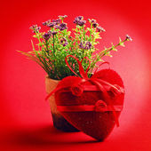 Flower in the pot decorated by heart — Stock Photo