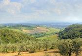 Tuscany — Stockfoto