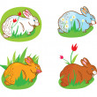 Rabbit in the grass with flowers easter — ストックベクタ