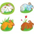 Rabbit in the grass with flowers easter — Imagen vectorial