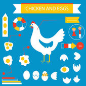 Chicken and eggs infographic set — Vector de stock