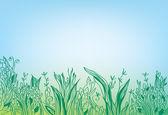 Summer grass border banner — Stock Vector