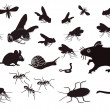 Pests and vermin — Stock Vector