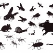Pests and vermin — Stock Vector #12258124