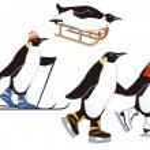 Penguins in winter sports — Stock Vector #12547593