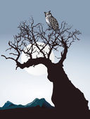 Owl on an old tree — Stock Vector