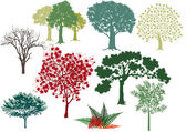 Conjunto de árvores de folha caduca — Vetorial Stock