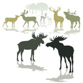 Elk, deer and fawn — Stock Vector