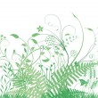 Green grasses and plants — Imagen vectorial