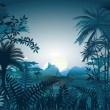 Night in the tropical rainforest — Stock Vector