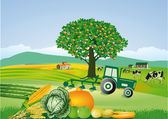 Agriculture and harvest, thanksgiving — Stock Vector