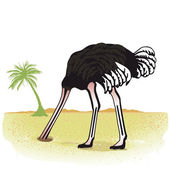 Ostrich hides its head in the sand — Stock Vector