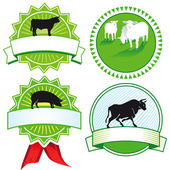 Cattle breeding signs — Stock Vector