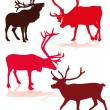 Reindeer — Stock Vector