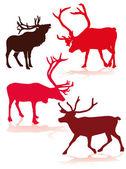 Reindeer — Stock Vector