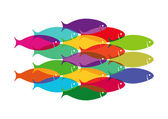 Colourful Fish Shoal — Stock Vector