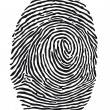 Fingerprint — Stock Vector #36583369