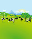 Mountain landscape with black, white cows — Stock Vector