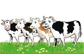 Four happy cows — Stockvektor
