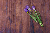 Lavender on wood background — Stock Photo