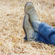 Royalty-Free Stock Photo: Blue Jeans and Cowboy Boots