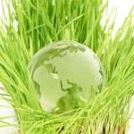 Environment concept — Stock Photo #13373517