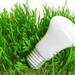 Light bulb on grass symbolizing green energy — Stock Photo #15795065
