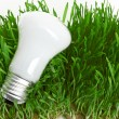 Light bulb on grass symbolizing green energy - Foto de Stock  