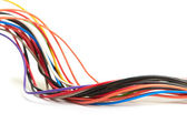 Multicolored computer cable isolated on white background — Stock Photo