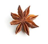 Star anise isolated on white background — Stock Photo