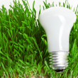 Stock Photo: Light bulb on grass symbolizing green energy
