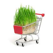 ショッピング カートの白い背景で隔離の緑の芝生 — ストック写真