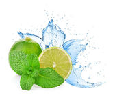 Water splash on lime with mint isolated on white — Stock Photo