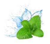 Mint leafs water splash — Stock Photo