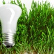 Light bulb on grass symbolizing green energy — Stock Photo