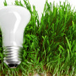 Light bulb on grass symbolizing green energy — Stock Photo #22130811