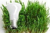 žárovka na trávě, symbolizující zelené energie — Stock fotografie