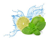 Lime and mint on water splash — Stock Photo