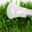 Light bulb on grass  — Stock Photo