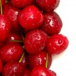 Cherry selection — Foto de stock #29270649